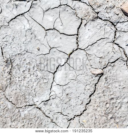 The Abstract Cracked Sand  Texture