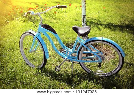 Bicycle parked on grass near birch tree in park