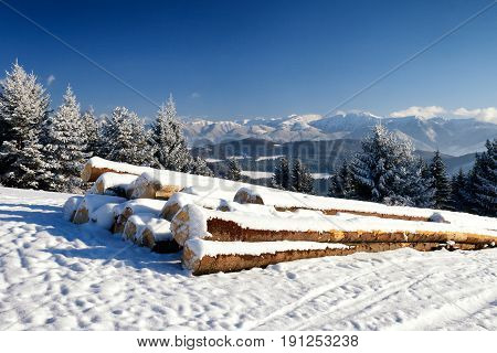 Snowy landscape. Foreground with heap of wood from felled trees stored on a snowy meadow. Snow-capped mountains in the background.