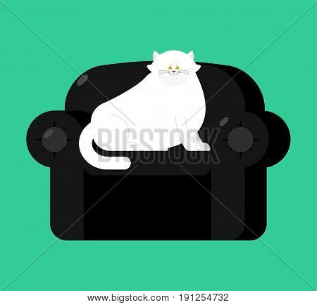 Fat White Cat On Soft Armchair. Thick Big Pet On Black Chair