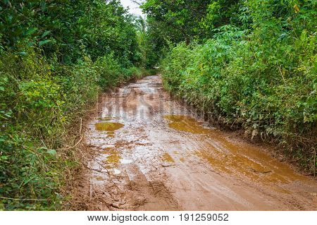 Dirt Mud Road In Jungle Of Vietnam