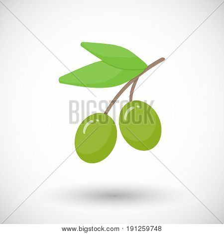 Olive branch vector flat icon Flat design of food health care or Mediterranean cuisine object with round shadow plastic water bottle illustration