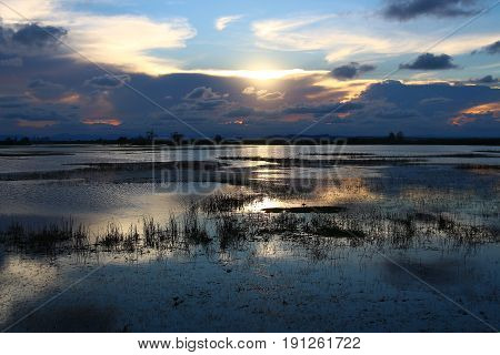 Sunset and cloudy sky over the shallow part of the lake with shadow of the grass and reflection of the water