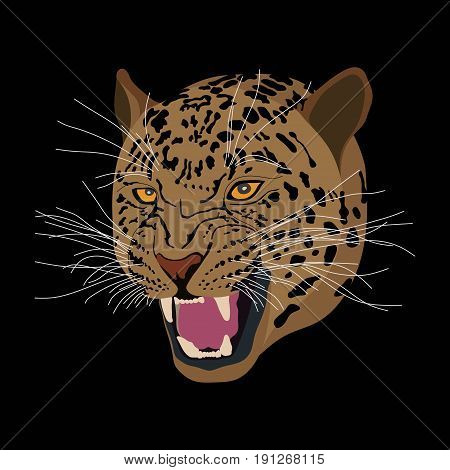 Tiger head realistic image of an animal flat design vector image