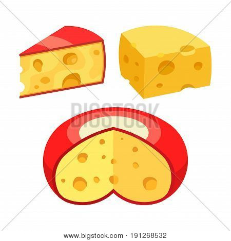 set of different kinds of cheese realistic image flat style vector image