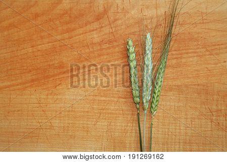 three crop ears on wood: wheat rye barley