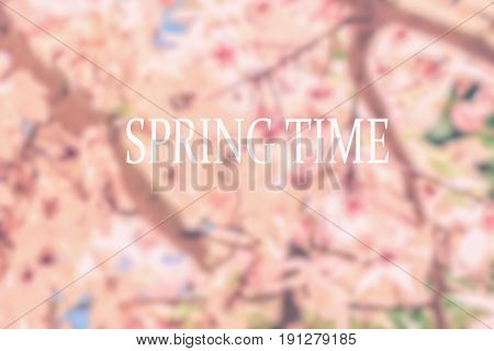 Blurred image of pink flowers background on spring