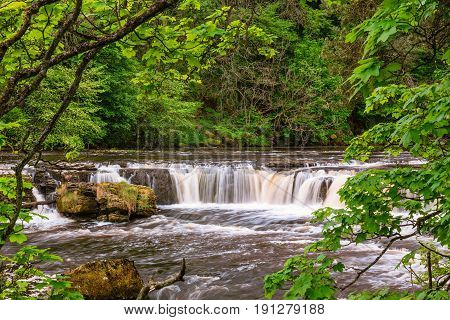River Ure at Upper Aysgarth Falls - Aysgarth Falls consist of three main falls lower middle and upper falls. They are spread over a mile of the River Ure in Wensleydale