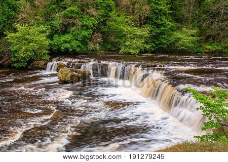 Upper Falls at Aysgarth - Aysgarth Falls consist of three main falls lower middle and upper falls. They are spread over a mile of the River Ure in Wensleydale