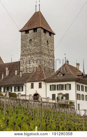 View on Spiez village in Switzerland, Europe.