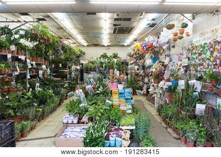 KOWLOON HONG KONG - APRIL 21 2017: Flowers and Plants Florist Shop at Prince Edward Road in Kowloon Hong Kong.