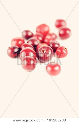Cranberries on white background - studio shot
