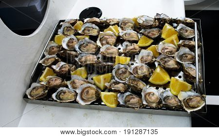 Fresh opened oysters at the boat in Walvis bay in Namibia