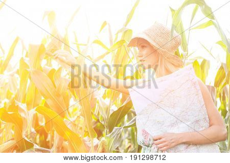 Woman looking through plants while holding map on sunny day