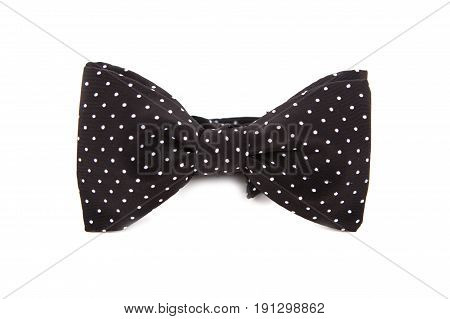 Bow tie accessory for a gentleman. Black with white polka dots.