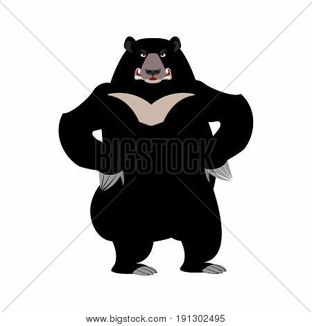 Himalayan Bear Angry Emotion. Aggressive Wild Animal Emoji. Black Big Beast