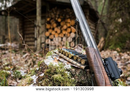 Hunting rifle with collimator sight and ammunition lying in the forest.