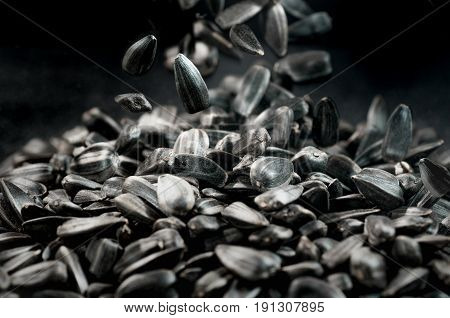 Black sunflower seeds close-up. Black sunflower seeds background with copy space