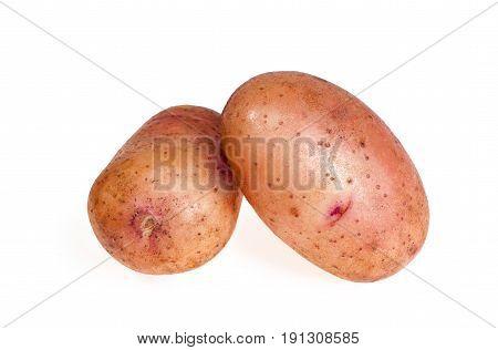 new sweet potato isolated on white background
