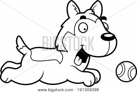 Cartoon Husky Chasing Ball