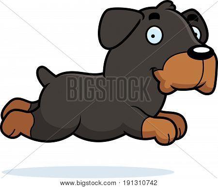 Cartoon Rottweiler Running