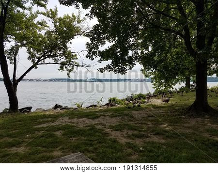 picnic table with geese and Potomac river, National harbor, and Wilson bridge nearby