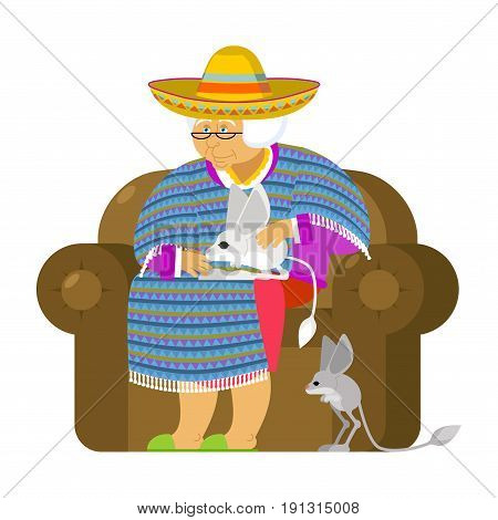 Mexican Grandmother And Jerboa A Pet. Old Woman From Mexico On Chair. Sombrero And Poncho. Tradition