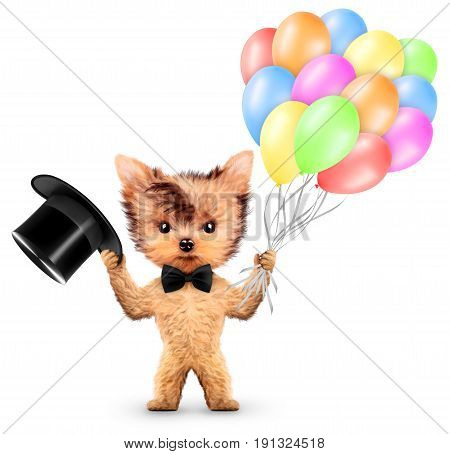 Funny animal keep a bunch of balloons and cylinder isolated on white background. Birthday and party concept. Realistic 3D illustration