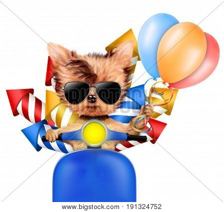 Funny dog carry firework rockets and balloons isolated on white background. Birthday and party concept. Realistic 3D illustration.