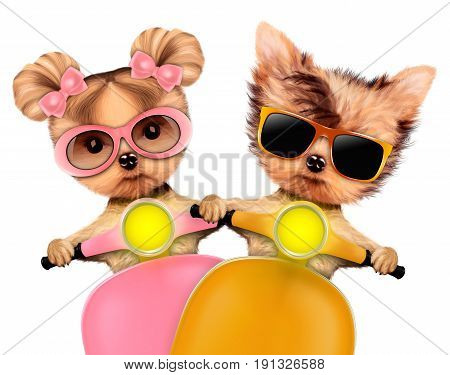 Couple of funny puppies with sunglasses sitting on motorbike, isolated on white. Love and friendship concept. Realistic 3D illustration