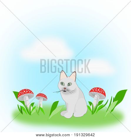A cat sitting on a meadow with toadstools.