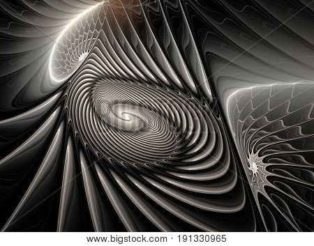 Ammonites. Monochromatic abstract fractal in black and white colors. Computer-generated image
