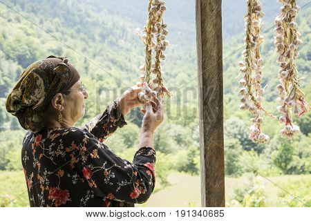 Elderly woman picking dried queue garlic in balcony side view villagers preserving garlic for longer time.