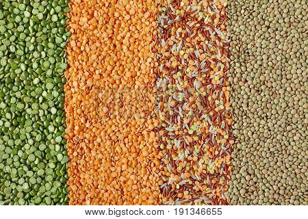 Dried Legumes In Vertical Layers