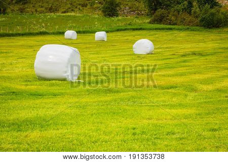 Bale Of Hay Wrapped In Plastic Foil, Norway