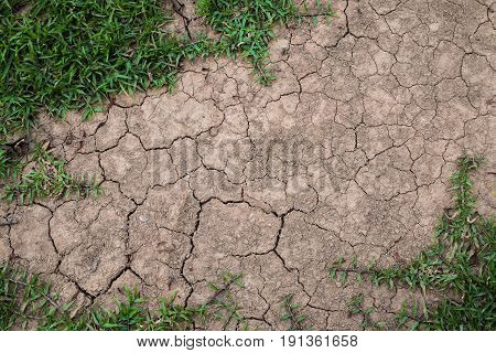 Dry mud drought background, Concept drought .