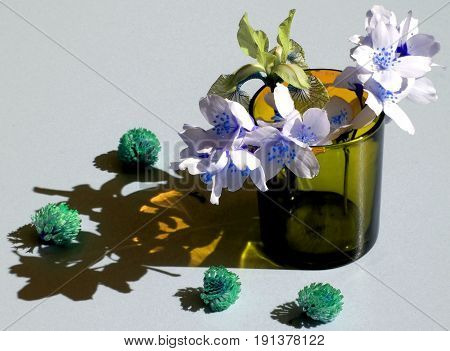 Light and shadow bouquet of flowers iris jasmine clover glass reflex