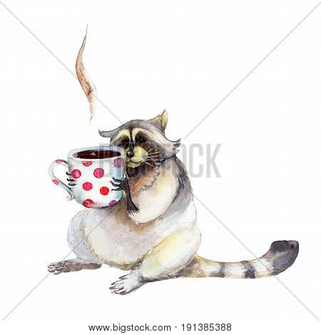Raccoon with mug animal character isolated on white background watercolor illustration.