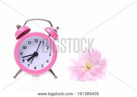 Pink Retro Alarm Clock And Small Light Pink Sakura Flower