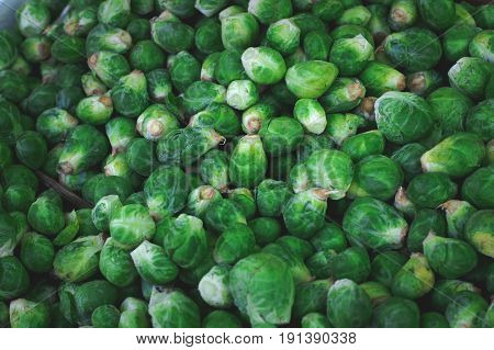 Lots Of Small Green Brussel Sprout Vegetables.