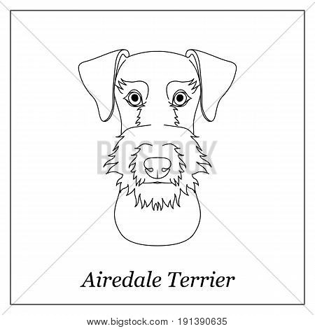 Isolated black outline head of airedale terrier on white background. Line cartoon breed dog portrait