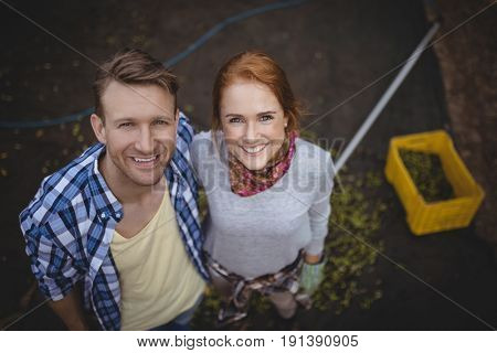 High angle portrait of happy young couple standing at olive farm
