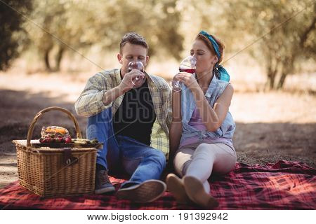 Young couple drinking red wine while sitting on mat at farm