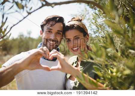 Portrait of smiling couple making heart shape by trees at olive farm
