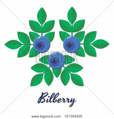 vector illustration, blueberries, bilberry, blue forest berries with green leaves