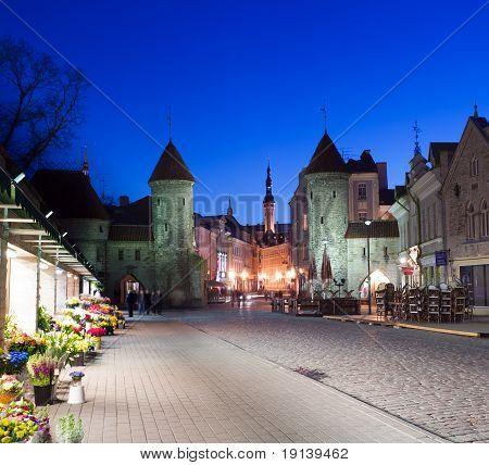 Castle Walls Of Tallinn