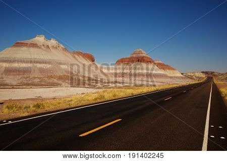 Petrified Forest Road in Petrified Forest National Park Arizona USA
