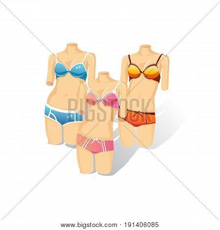 Underwear showcase illustration . Vector Illustration design