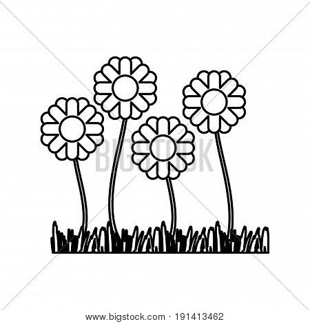 sketch silhouette closeup of sown of abstract sunflowers vector illustration