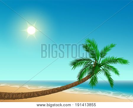 Paradise tropical beach. Inclined palm tree, clear sky, sun, sea and sand. Vector cartoon illustration